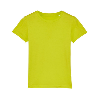 T-Shirt scale green